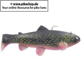 Farbe: CA Custom Northern Pike