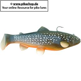 Farbe: CA Northern Pike