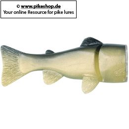 Farbe: CA Ghost Green Trout (Quick Snap Modell)