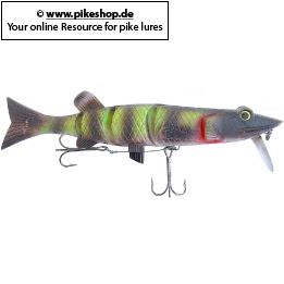 Farbe: DW Barred Musky