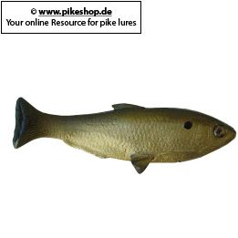Farbe: HD Golden Shad