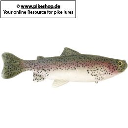 Farbe: RP Rainbow Trout