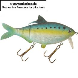 Farbe: RS American Shad