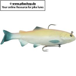 Farbe: RS Golden Shiner