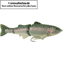 Farbe: TY Rainbow Trout (Dark Green Back)