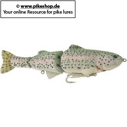 Farbe: TY Rainbow Trout (Light Green Back)