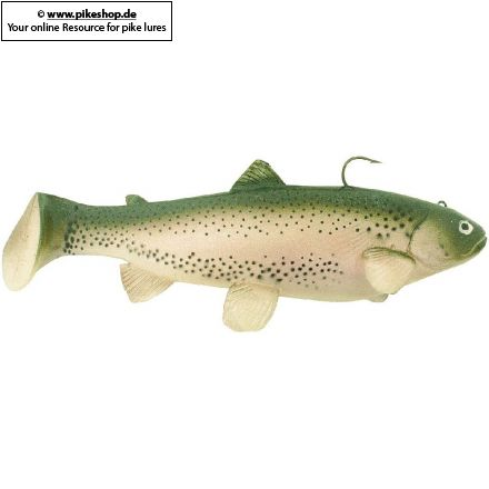 CA Rainbow Trout
