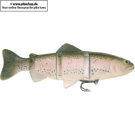Catch22 (Slow Sinker) - 25cm (10 Zoll)