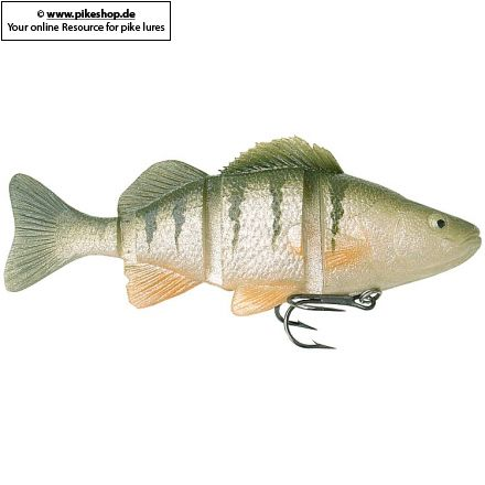 Catch22 (Slow Sinker) - 15cm (6 Zoll)