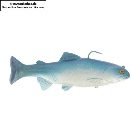 HD Trout Silver / Blue Back