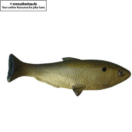 HD Golden Shad