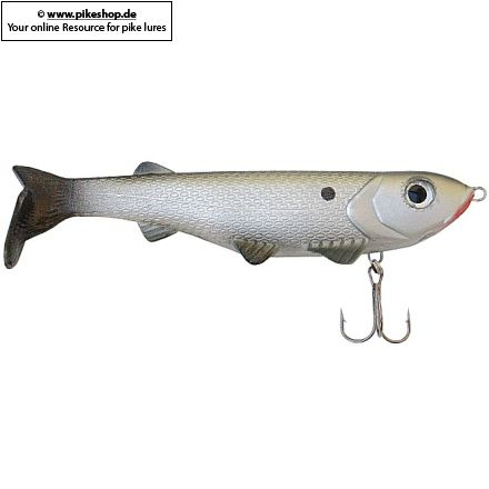 RS Silver Shad