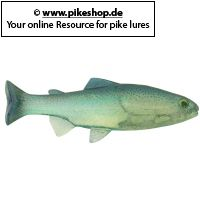 Huddleston Weedless Shad - 15cm (6 Zoll)