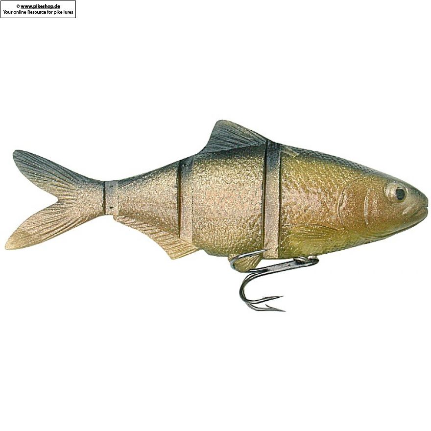 Catch22 (Slow Sinker) - 15cm (6 Zoll) - CA Golden Shiner