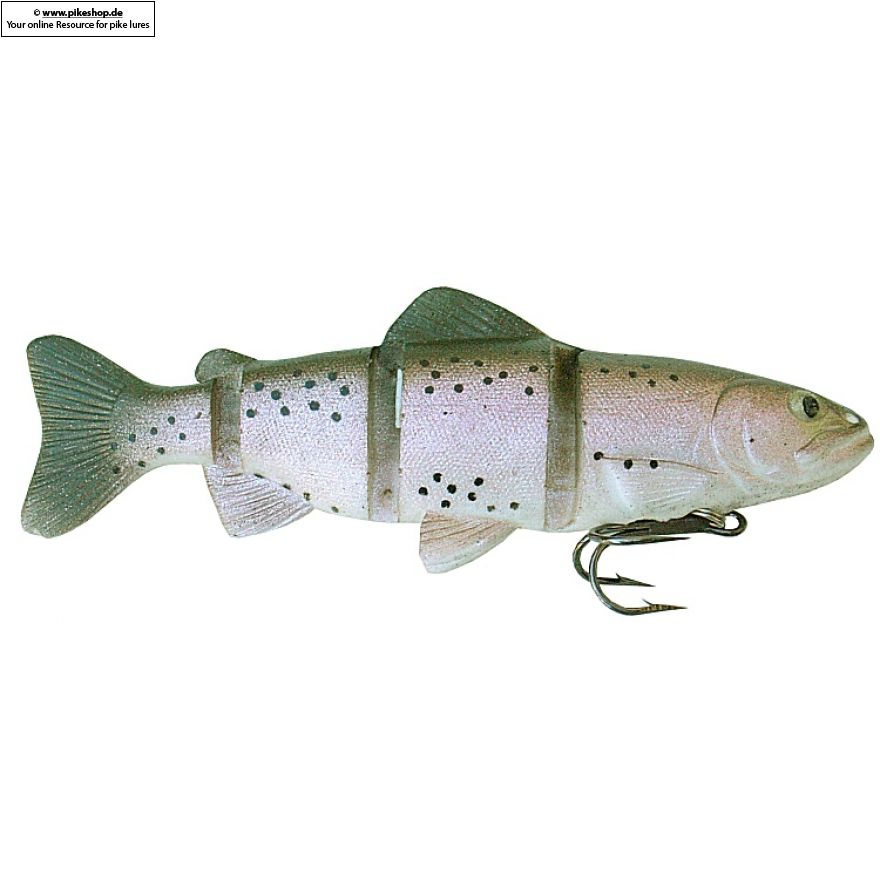 Catch22 (Slow Sinker) - 15cm (6 Zoll) - CA Rainbow Trout