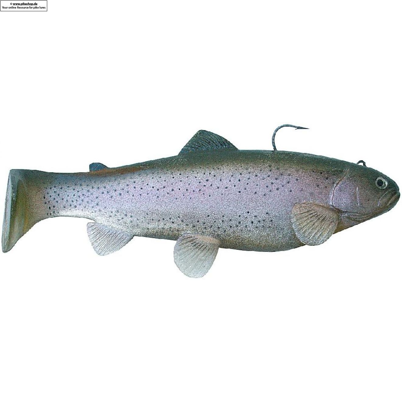 Boot Tail (Sinker) - 25cm (10 Zoll) - CA Ghost Rainbow