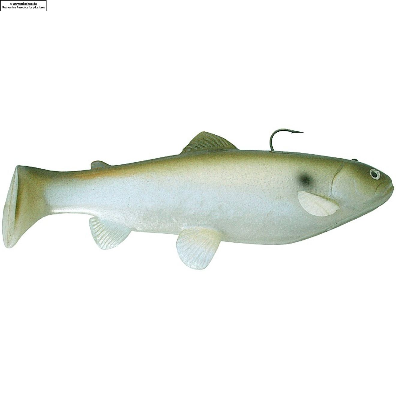 Boot Tail (Slow Sinker) - 25cm (10 Zoll) - CA Green Shad